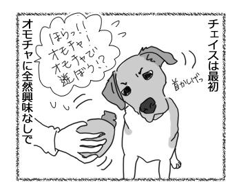 羊の国のラブラドール絵日記シニア!!「オモチャ?への目覚め」1