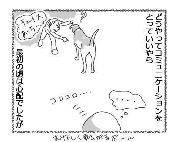 羊の国のラブラドール絵日記シニア!!「オモチャ?への目覚め」2