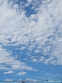 いい雲が出てる