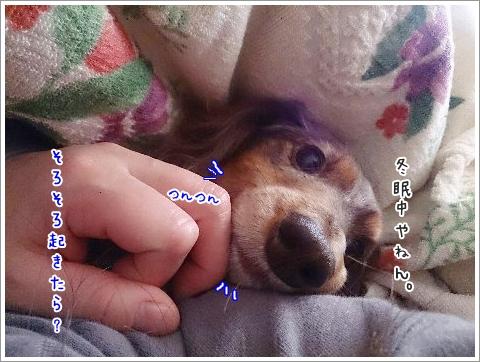 fc2_2015-01-06_03.jpg