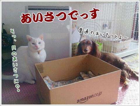 fc2_2015-01-15_07.jpg