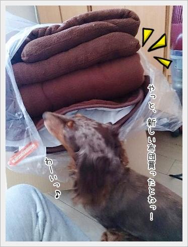 fc2_2015-01-23_01.jpg