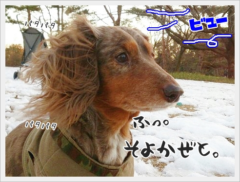 fc2_2015-02-02_01.jpg