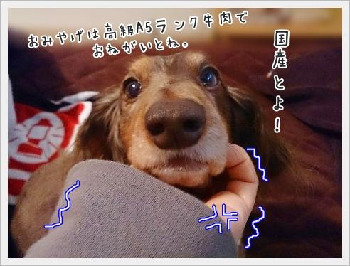 fc2_2015-02-06_04.jpg