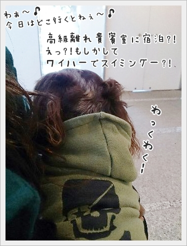 fc2_2015-02-09_01.jpg