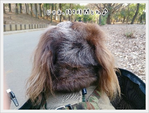 fc2_2015-02-23_04.jpg