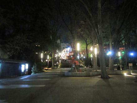 夜の井の頭公園