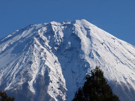 朝霧ドッグランから見た富士山のてっぺん