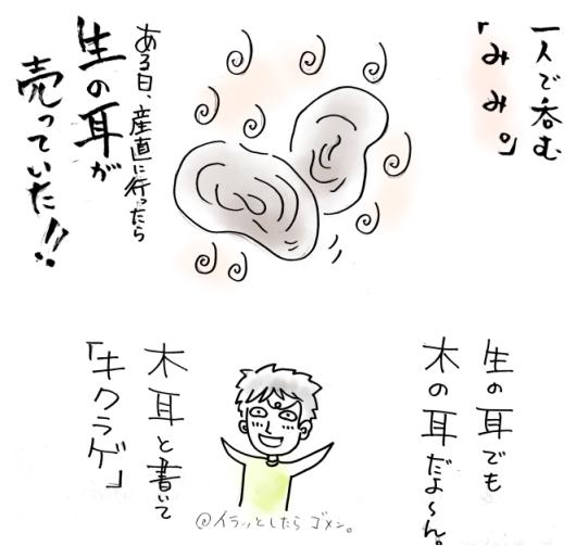 maruma2961.jpg
