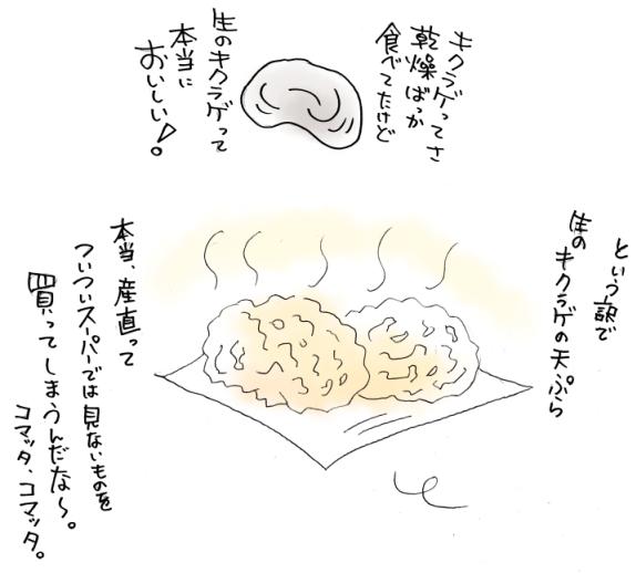 maruma2962.jpg