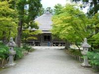 2018-06-30平泉-毛越寺アヤメ祭り-しろぷーうさぎ171