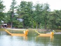 2018-06-30平泉-毛越寺アヤメ祭り-しろぷーうさぎ179