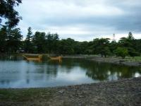 2018-06-30平泉-毛越寺アヤメ祭り-しろぷーうさぎ178