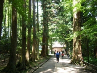 2018-07-14重箱石しろぷーうさぎ・中尊寺ハス祭り158