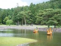 2018-06-30平泉-毛越寺アヤメ祭り-しろぷーうさぎ185