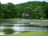 2018-06-30平泉-毛越寺アヤメ祭り-しろぷーうさぎ184