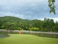 2018-06-30平泉-毛越寺アヤメ祭り-しろぷーうさぎ190