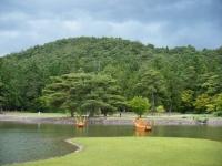 2018-06-30平泉-毛越寺アヤメ祭り-しろぷーうさぎ189