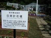 2018-06-09花巻薔薇園235