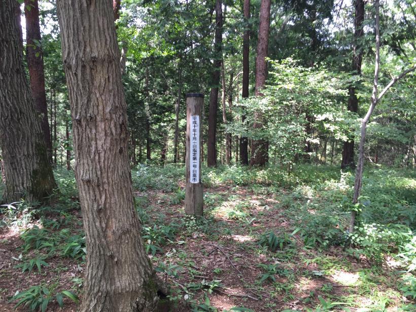 hiwadayama17.jpg