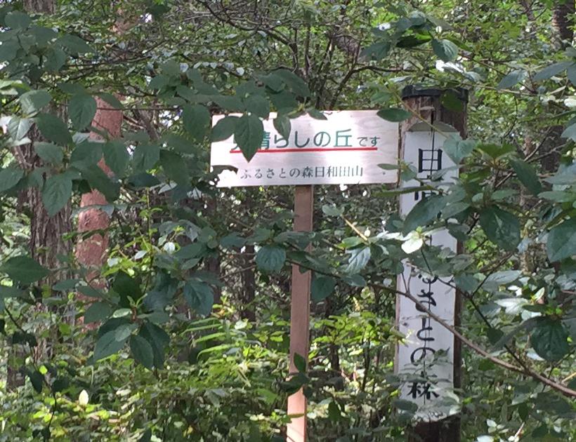 hiwadayama36B.jpg