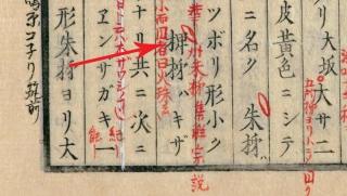 本草綱目啓蒙巻26「柿」から-2
