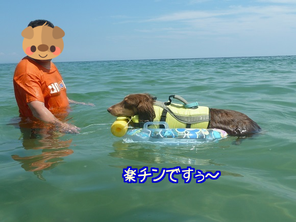201508181247469a2.png