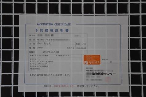 DSC05081022.jpg