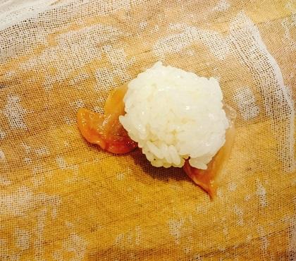 味吉陽一特製握り寿司六種8