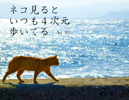 ネコ見るといつも4次元歩いてる