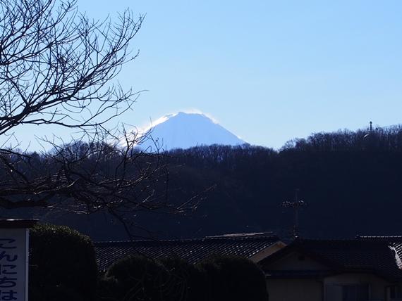 takeda-20150103-06s.jpg