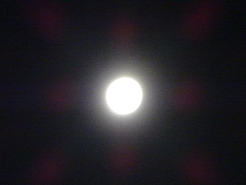 150801-55.jpg