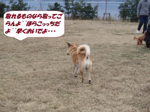 PC280359_convert_20141230134826.jpg