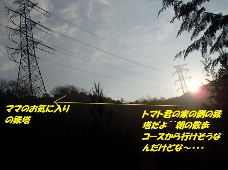 PC290376_convert_20141231142922.jpg