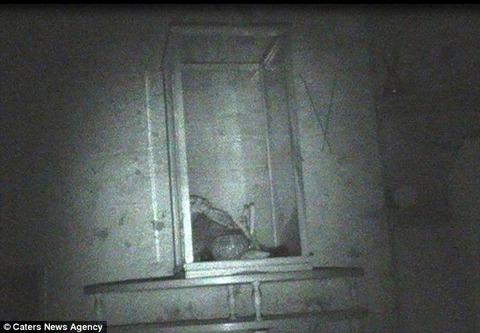 「呪いの人形」が深夜に動く様子がハッキリと映像に撮られる