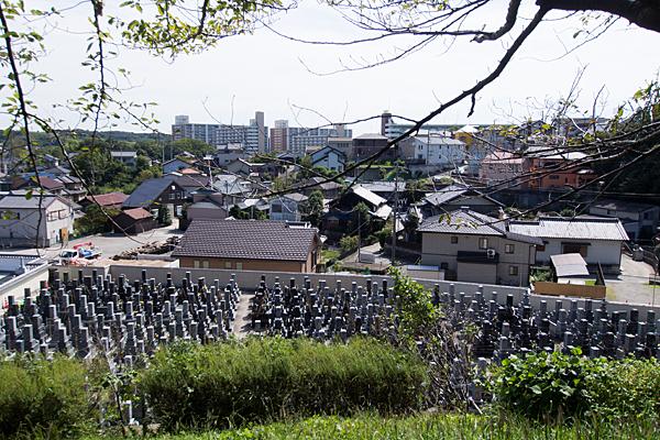 城山八幡社城跡から見下ろす