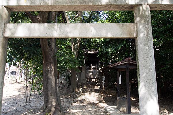 大高山神社鳥居から本社