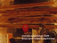 IMGP0159.jpg