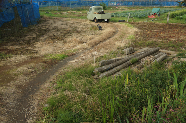 畦道と発動機を積んだミゼット
