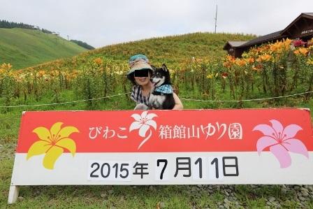 箱館山ゆり園散策47