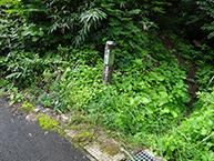 158196.jpg