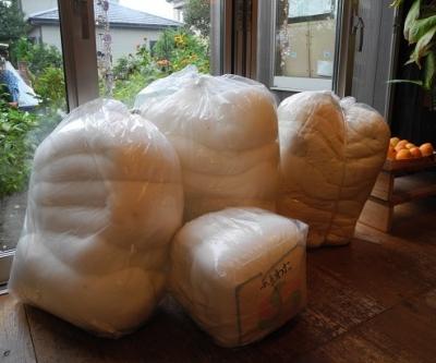 20181010大量の綿