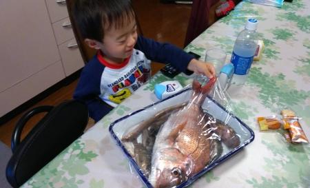 fish20181029-1.jpg