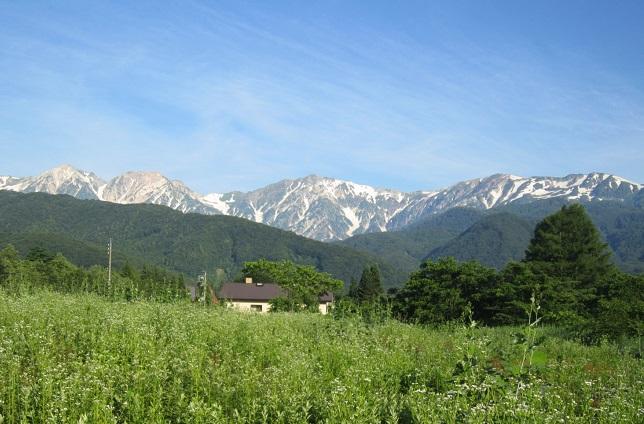 白馬岳の雪渓