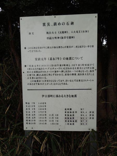 sasayuri1.jpg
