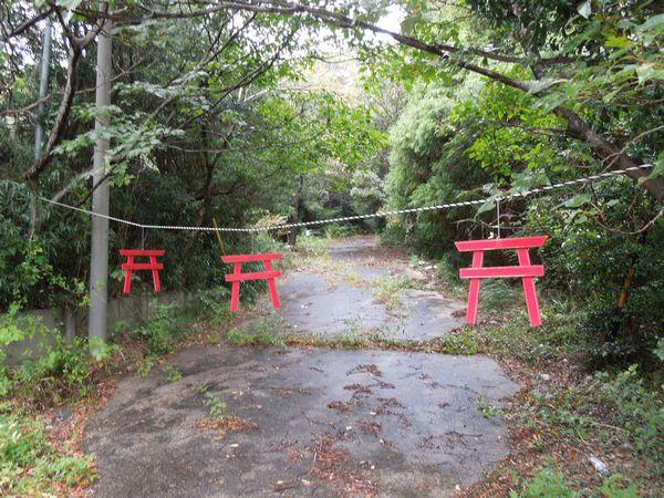 torii8.jpg