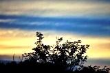 夕陽 (8)