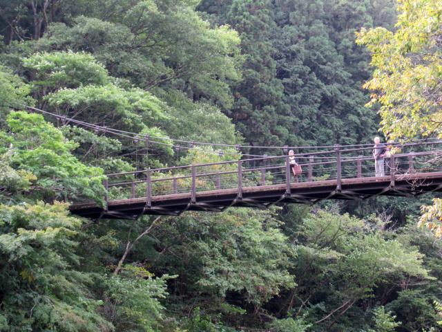 鳩の巣小橋2