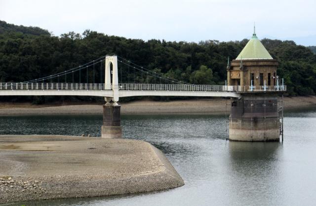 狭山湖の吊橋3