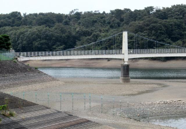狭山湖の吊橋2